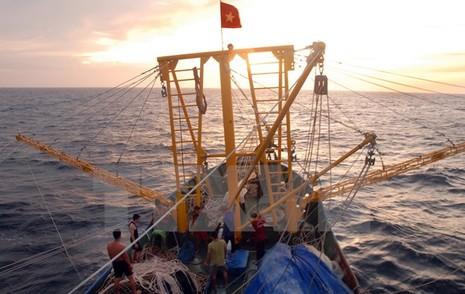 Việt-Trung khảo sát khu vực thỏa thuận vùng ngoài cửa vịnh Bắc Bộ - ảnh 1