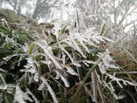 Nhiều nơi ở miền Bắc chìm trong băng tuyết lịch sử âm 6-8 độ C - ảnh 22