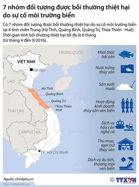 Infographic: 7 nhóm được bồi thường do sự cố cá chết - ảnh 1