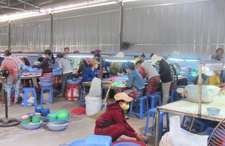 Tỉnh ủy Phú Yên vào cuộc vụ vợ bí thư huyện cho thuê đất trái phép - ảnh 1