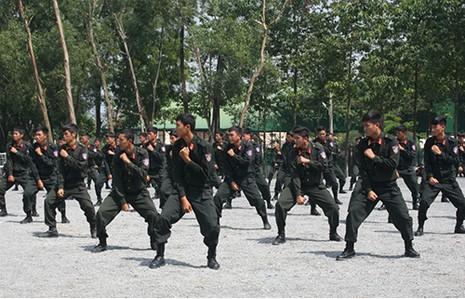 Xem cảnh sát cơ động Bình Dương trình diễn võ thuật - ảnh 1