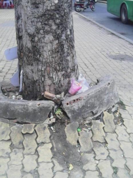 """Không có thùng rác, trạm xe buýt """"như bãi chiến trường"""" - ảnh 4"""