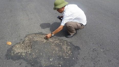 Quốc lộ 1A bị phá hoại bằng hóa chất lạ - ảnh 1