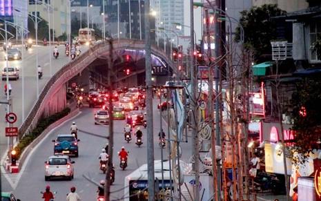 Hàng cây mỡ trên đường Nguyễn Chí Thanh - Hà Nội chết khô  - ảnh 2