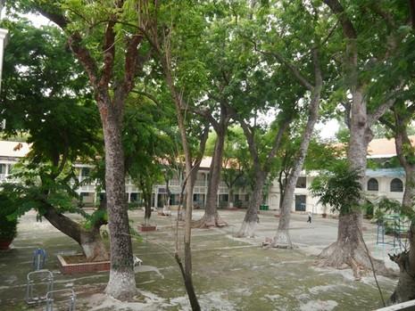 Độc đáo những ngôi trường trăm tuổi ở Sài Gòn - ảnh 10
