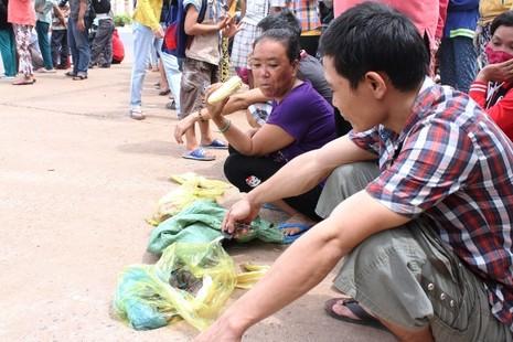 Người dân bỏ việc ra hiện trường theo dõi thực nghiệm vụ thảm sát ở Bình Phước  - ảnh 9