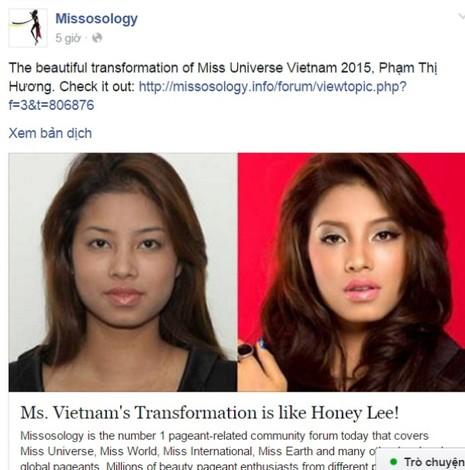 Phạm Hương bị 'tố' phẫu thuật thẩm mỹ  - ảnh 1