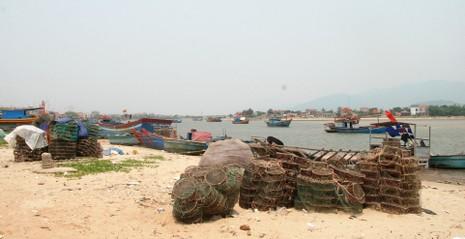 Cá biển tiếp tục chết, ngư dân Quảng Bình điêu đứng - ảnh 1