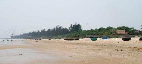 Cá biển tiếp tục chết, ngư dân Quảng Bình điêu đứng - ảnh 2