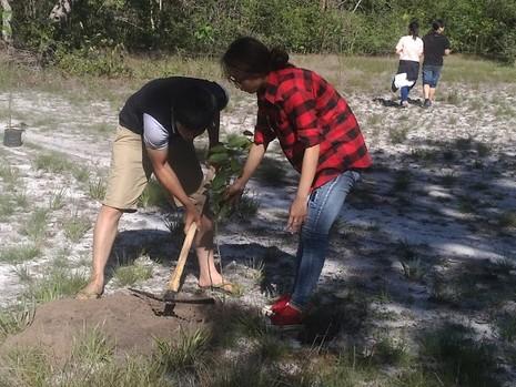 Đi picnic trồng cây gây rừng - ảnh 4