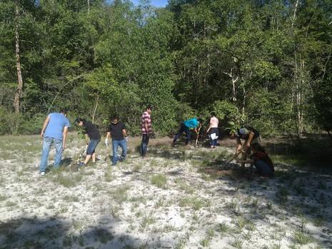 Đi picnic trồng cây gây rừng - ảnh 5