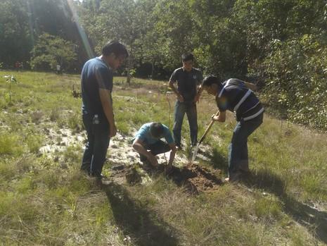 Đi picnic trồng cây gây rừng - ảnh 2