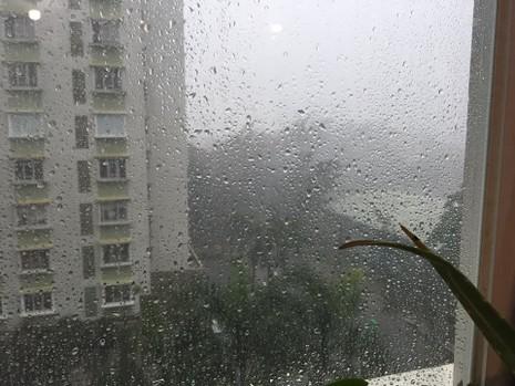 TP.HCM bất ngờ đón 'mưa xuân' chiều mùng 6 Tết  - ảnh 3