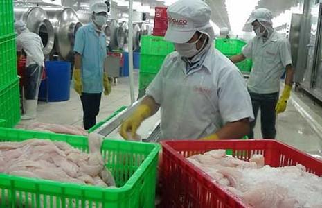 Đồng euro mất giá, xuất khẩu Việt lỗ đậm - ảnh 1
