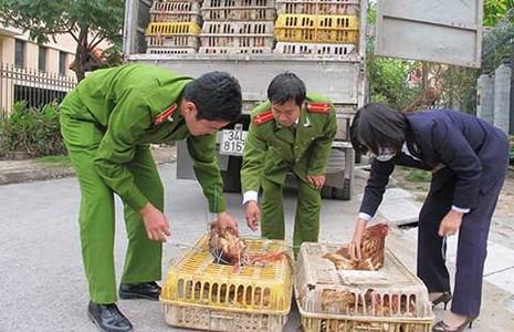 20 tỉ USD nhập siêu từ Trung Quốc: Sự thật và ẩn số - ảnh 2
