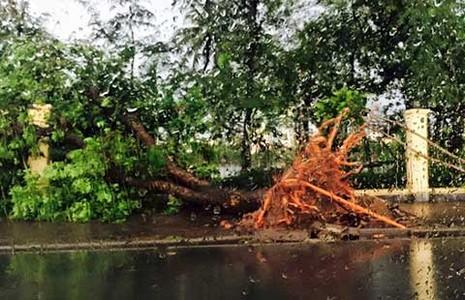 Hà Nội: Giông lốc khủng khiếp, cây đổ, xe lật, nhà bật móng - ảnh 4