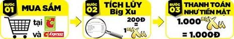 Thẻ Ưu đãi Big C: Tri ân Khách hàng bằng lợi ích thiết thực - ảnh 2