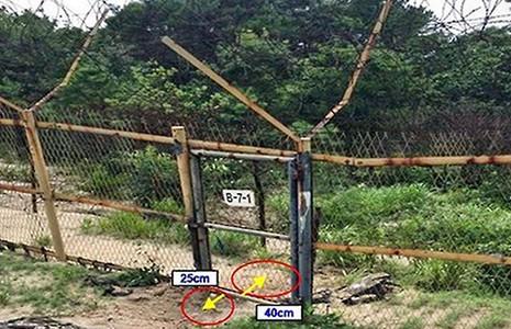 CHDCND Triều Tiên tuyên bố không gài mìn - ảnh 1