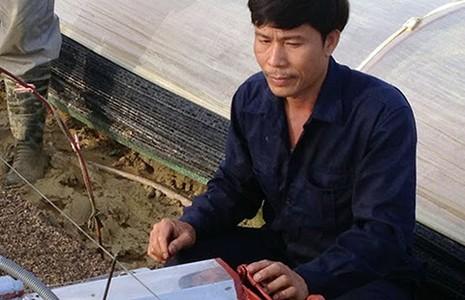 'Hai lúa' Việt chinh phục ông chủ Israel  - ảnh 1