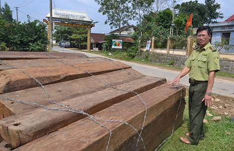Nhận hối lộ của lâm tặc, cả trạm bảo vệ rừng bị bắt  - ảnh 1