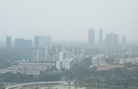 Cháy rừng tại Indonesia: Đe dọa sức khỏe cả khu vực - ảnh 3