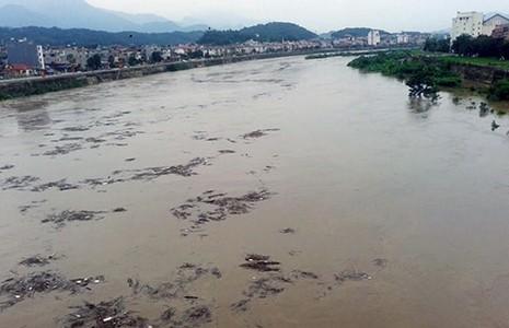 Lũ vì thủy điện Trung Quốc: Cần luật chơi mới! - ảnh 1
