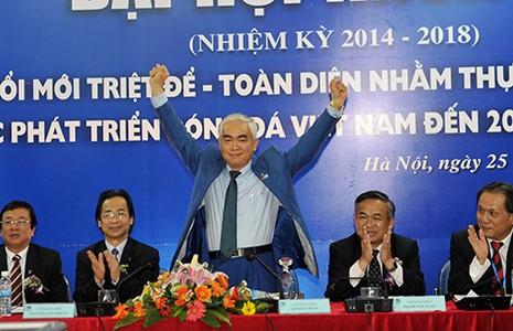 Cải tổ bóng đá Việt Nam: Làm lại từ đâu? - ảnh 1