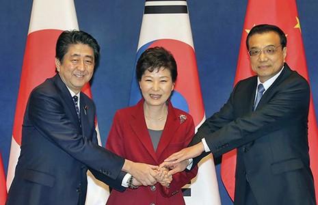 Hàn-Trung-Nhật nối lại hợp tác  - ảnh 1