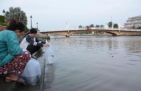Cứu cầu cũ ở Sài Gòn - ảnh 1