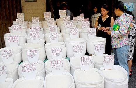Lấy gạo Nhật làm thương hiệu gạo Việt?  - ảnh 1