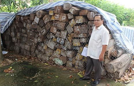 Vụ 'nhập lậu gỗ' đình đám: Bộ Công an đề nghị hải quan trả gỗ - ảnh 1