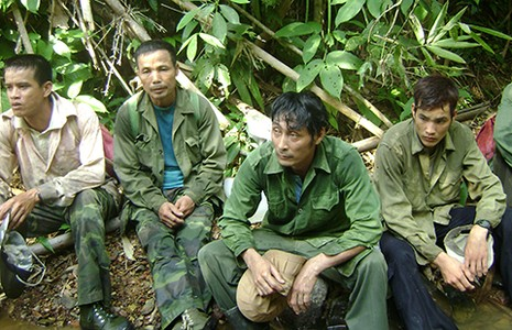 Đồng Nai phản ứng dự án đường xuyên rừng Cát Tiên - ảnh 1