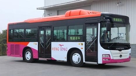 Băn khoăn việc mua 500 xe buýt TQ  - ảnh 2