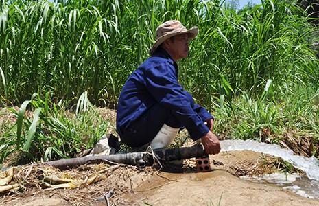 Nha Trang: Nhà máy nước bị đe dọa - ảnh 1