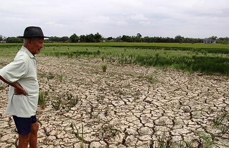 Thủy điện trên sông Mekong lợi ít, hại nhiều - ảnh 1