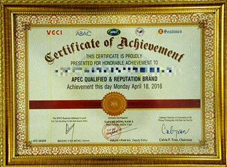 Doanh nhân ấm ức nhận 'Giải thưởng APEC' - ảnh 2