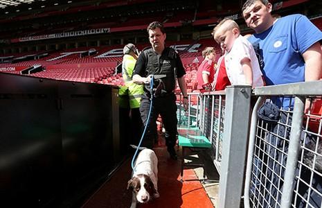Premier League kịch tính đến phút chót - ảnh 1