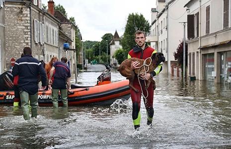 Ngập lụt lớn tại Đức, Pháp và Áo - ảnh 1