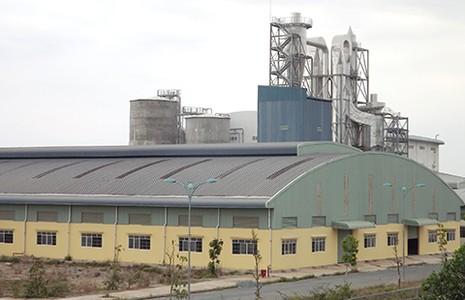 Nhà máy giấy 2.000 tỉ 'trùm mền', người dân ôm nợ - ảnh 1