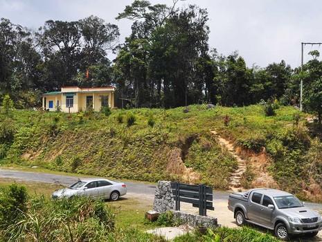 Khánh Hòa: Xóa sổ 100 ha rừng ở Hòn Bà - ảnh 1