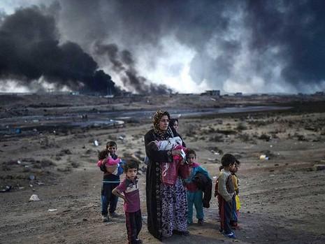 Chiến dịch tái chiếm Mosul bước sang tuần thứ 3  - ảnh 1