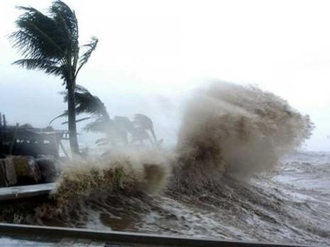 Vì sao 'bão nữ' dữ dằn hơn 'bão nam'? - ảnh 1