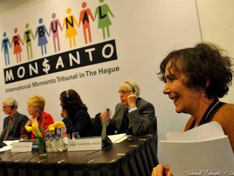 Những di sản 'quái thai' của Monsanto - ảnh 1