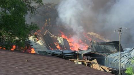 Hàng trăm cảnh sát dập đám cháy xưởng gỗ ở Thủ Đức - ảnh 3