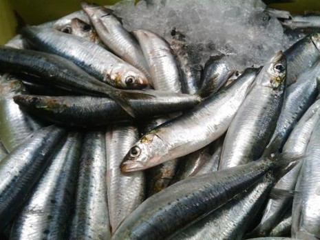 7 loại thực phẩm cung cấp omega-3 tốt nhất - ảnh 2