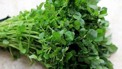 Lợi ích dinh dưỡng bất ngờ của rau cải xoong - ảnh 2