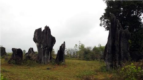 Đoàn làm phim 'King Kong' vất vả dưới mưa rừng nhiệt đới - ảnh 7