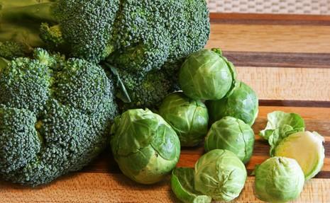 9 loại thực phẩm hỗ trợ ngăn ngừa ung thư - ảnh 5