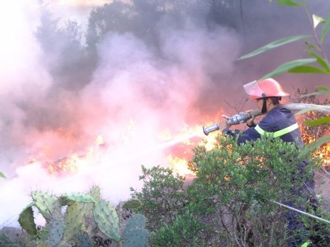 Lực lượng cứu hỏa đang tiến hành dập lửa.