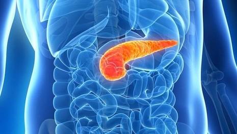 Ung thư tuyến tụy phổ biến ở nam giới hơn  phụ nữ